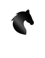 icono-caballo-02